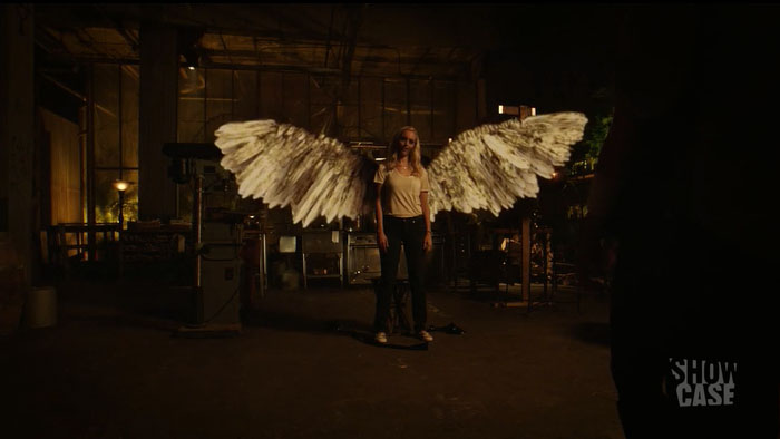 I am the harbinger of death. (Also: Let us pause for a moment to absorb the fact that THESE WINGS MEAN SHE'S ON HER LAST LIFE. My heart.)